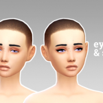 reticulated splines cat liner & eyeshadow