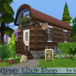 Ineliz's Gypsy Elixir Shop