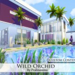 Pralinesims' Wild Orchid