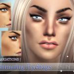 Pralinesims' Contouring Eyebags | N07