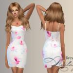 Nastas'ya's Dress 027