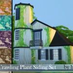 Ineliz's Crawling Plant Siding Set
