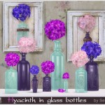 Severinka_'s Hyacinth in glass bottles