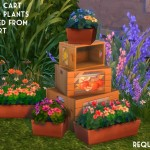 Orangemittens' Studio | Sims 4 Studio