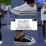SIB — Semller Low top Converse (S3toS4) M&F Teen-Elder…