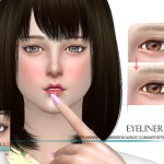 S-Club WM ts4 eyeliner 08