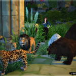 Jennisims: Downloads sims 4: Decoration Vol14(Bear,Jaguar,Lion Male,Female )