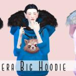 ✿ Big Hoodie