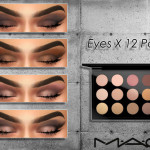 1,000+ Followers Gift! Eyes x 12 Palette by MAC… – Cosimetics