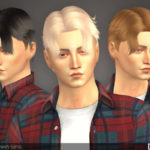 TsminhSims' David ( Hair 22 )