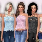 Harmonia's Embroidered Lace Front Crop Top