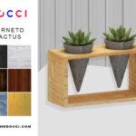 DOCCI SIMS — CORNETO CACTUS – CAN BE FOUND IN PLANT – 5…