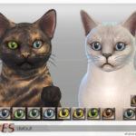 ShojoAngel's PetEyeSet2-Cats