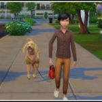 Kids can go for a Walk with Dogs – LittleMsSam