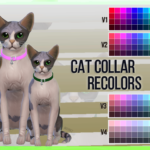 Mayrez Collar for Cats | Recolors