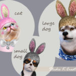 [PETS] Bunny hat(S4CC)