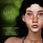 Blahberry Pancake's Mary Skin & Overlay