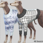 Pinkzombiecupcakes' Burberry Large Dog Sweaters Collection