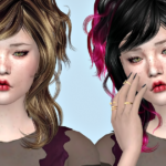 Jennisims: Downloads sims 4:Newsea Chihuahua Hair retexture
