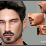 Seleng's Beard N6