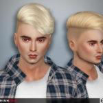 TsminhSims' Daniel ( Hair 60 )