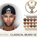 Boho Bears Boutique's Brayden Classical Beard Set