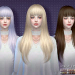S-Club's sclub ts4 hair Hime n43